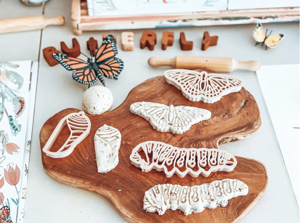 Monarch Butterfly Eco Life Cycle Set