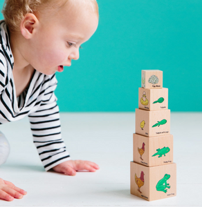 Lifecycle Wooden Blocks