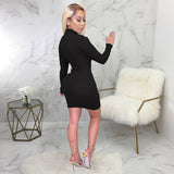Smart Waist Mock Neck Solid Long Sleeve Dress