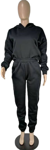Winter Pure Color Hooded Collar Womens Sweatsuit 2 Pieces Set Top And Pant -PT