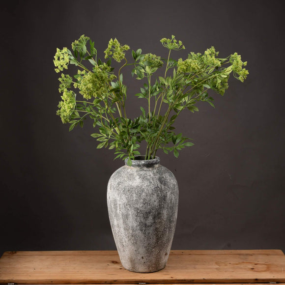Faux Cow Parsley Ammi | L J Home