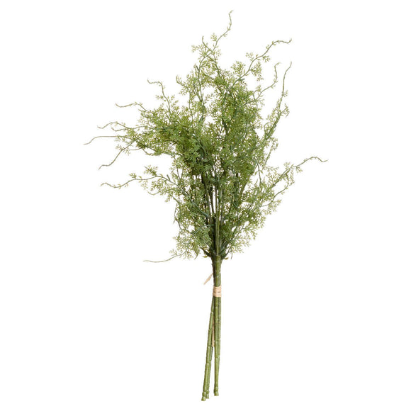 Asparagus Fern Bunch | L J Home