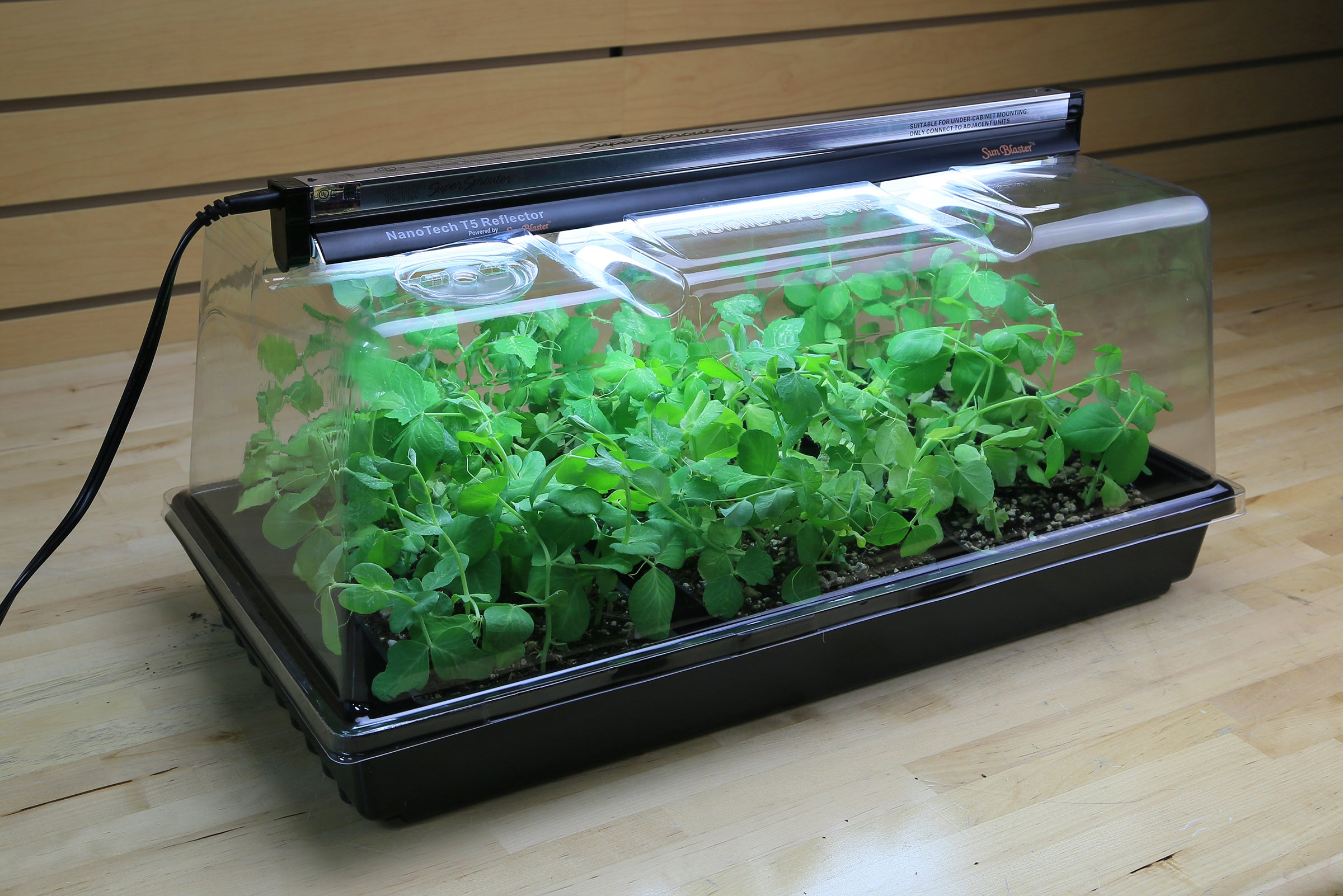 Super Sprouter Deluxe Propagation Kit