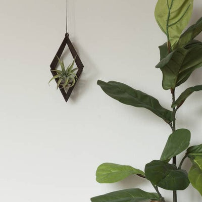 walnut air plant hanger diamond shape