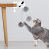 Cat Toy Electric Lifting Ball