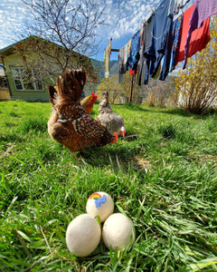 Dryer Balls Chickens Coming Up Rainbows