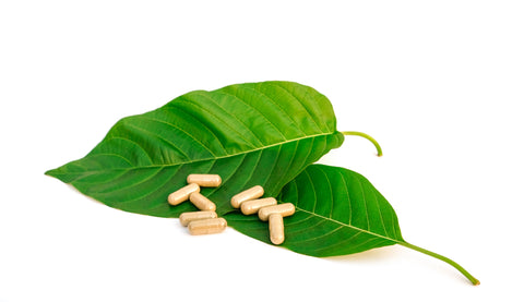 What Does Kratom Do And How to Use It