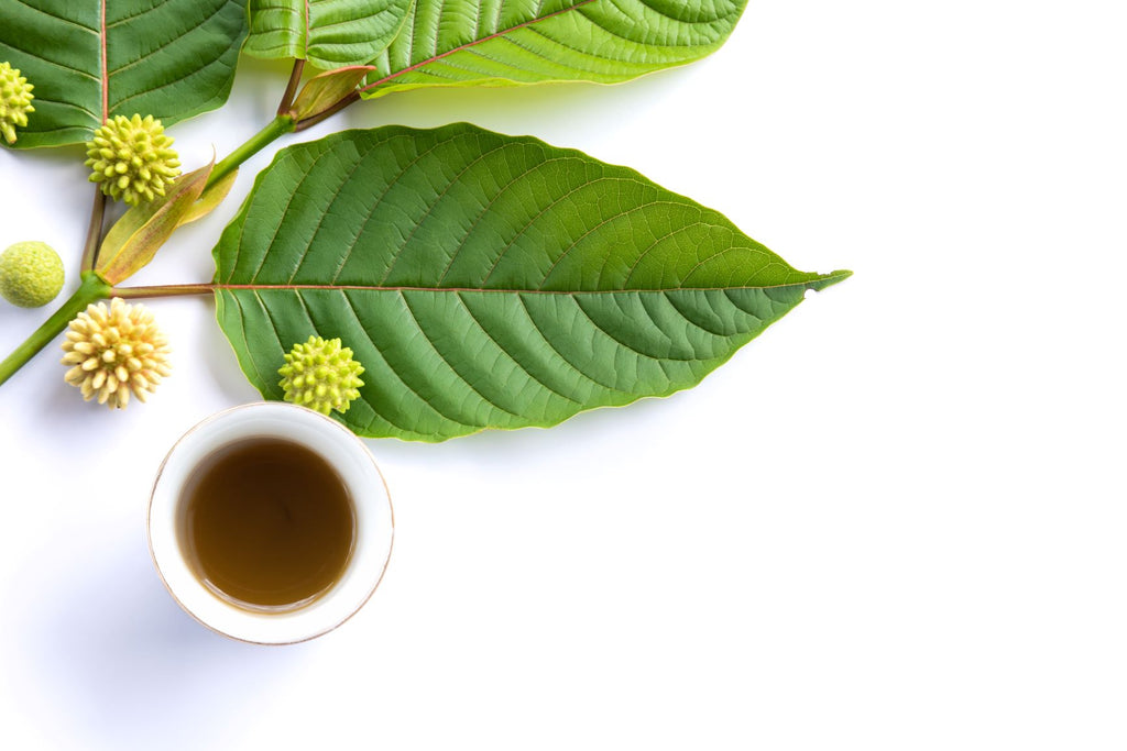 What is Kratom Extract