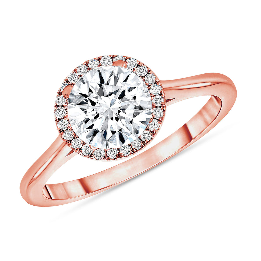 D&P Designs Single Halo Solid Band Engagement Ring Rose Gold