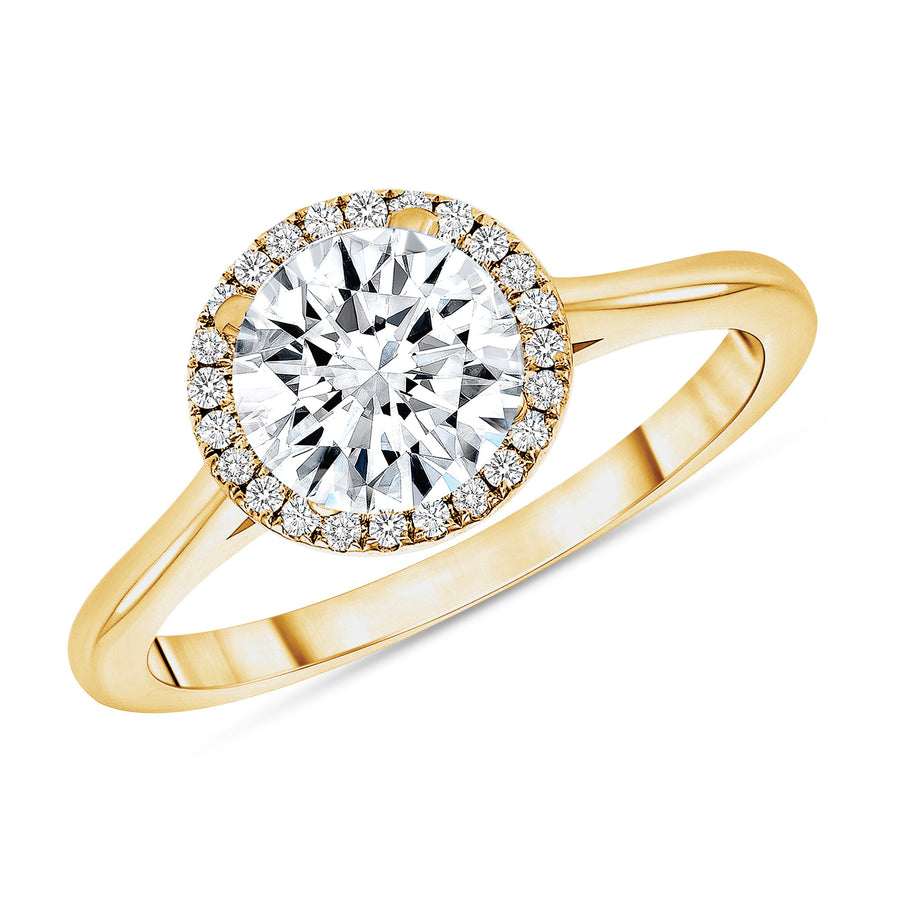 D&P Designs Single Halo Solid Band Engagement Ring Yellow Gold