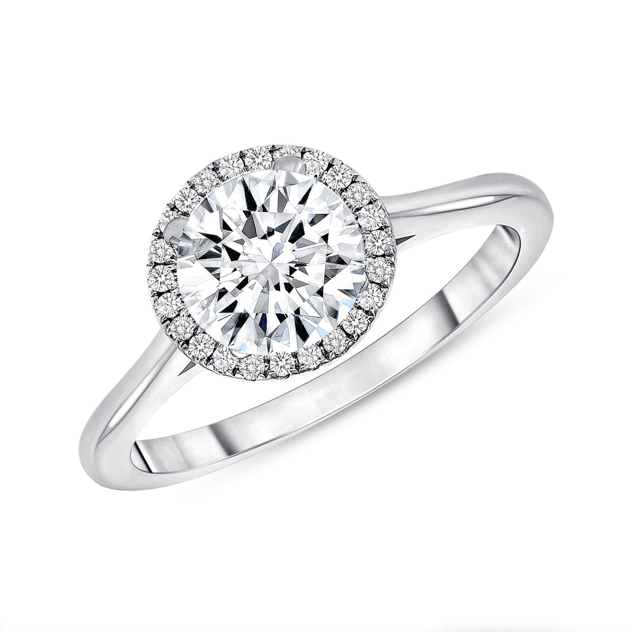 D&P Designs Single Halo Solid Band Engagement Ring Platinum