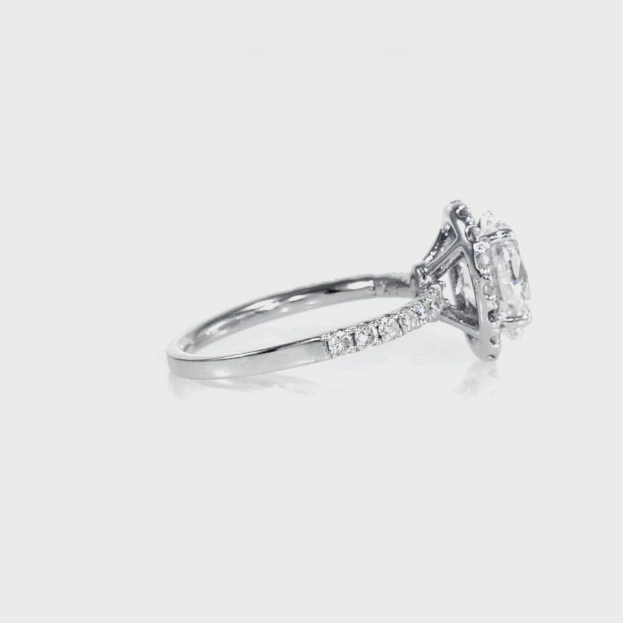 D&P Designs Single Halo Half Way Pave Engagement Ring White Gold