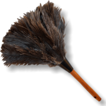 "Load image into Gallery viewer, 14"" Feather Duster"
