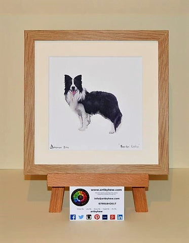 Border Collie - Original