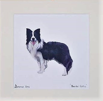 Border Collie - Limited Edition Print