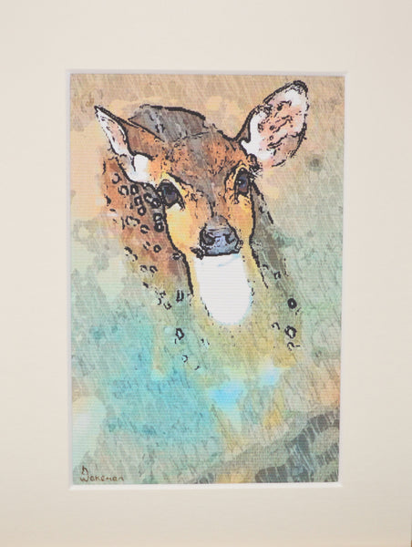 Doe Eyes  - Limited Edition Prints