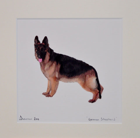 German Shepherd - Limited Edition Prints