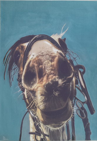 Horsing Around - Limited Edition Print