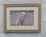 Piglet - Limited Edition Print