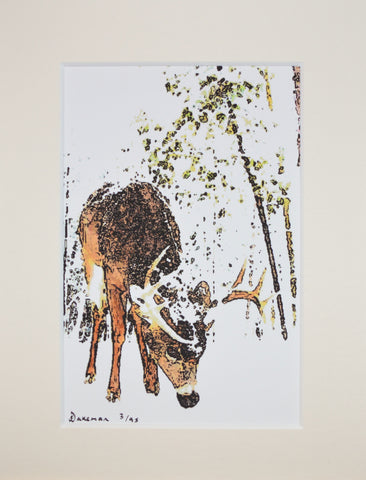 Reindeer In Snow - Limited Edition Print