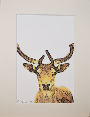 Reindeer Looking - Limited Edition Print