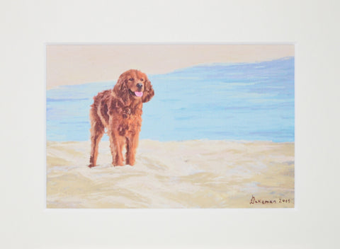 Setter By The Sea - Limited Edition Print