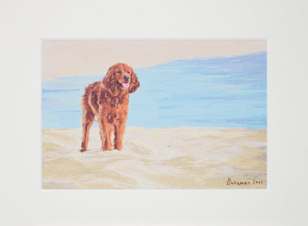 Setter By The Sea - Original