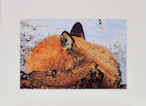 Fox Snuggling - Limited Edition Print
