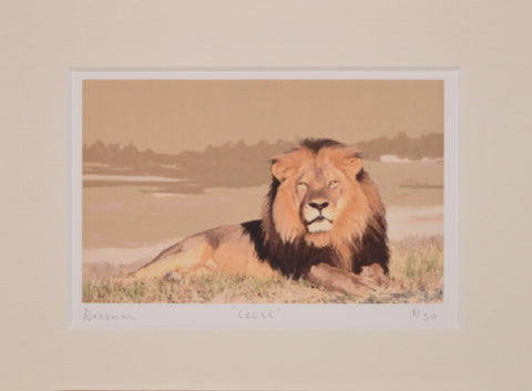 Cecil - Limited Edition Prints