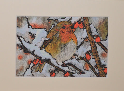 Robin With Berries - Limited Edition Print