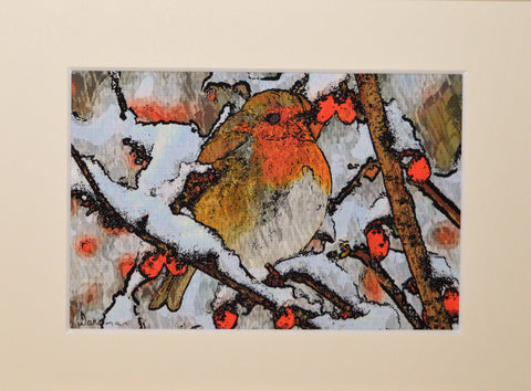 Robin With Berries - Original