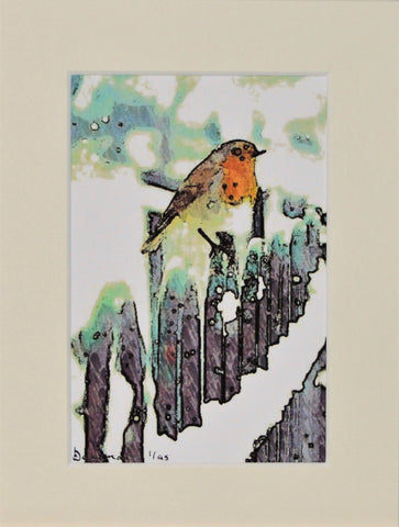 Robin On Fence - Limited Edition Print