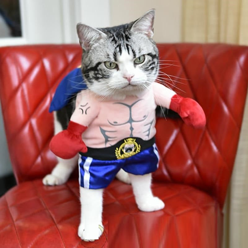 Funny MMA Boxer Cosplay Suit Pet Cat Costume