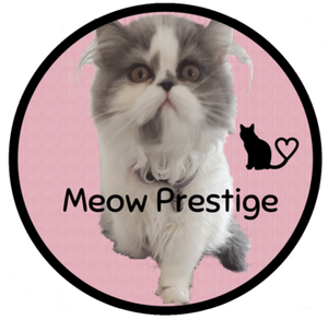 Meow Prestige Cat Lovers - Cat-themed Gifts Store for Cat Lovers Crazy cat Lady