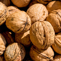 Walnut Featured Ingredient - L'Occitane