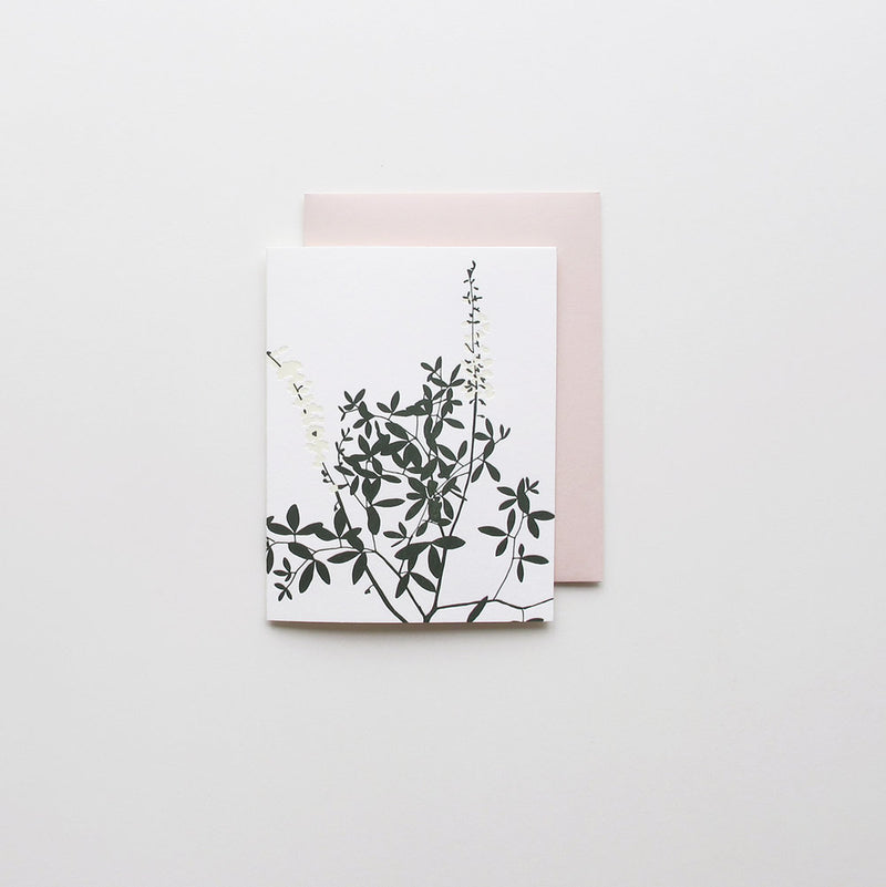 Spring Botanical Set