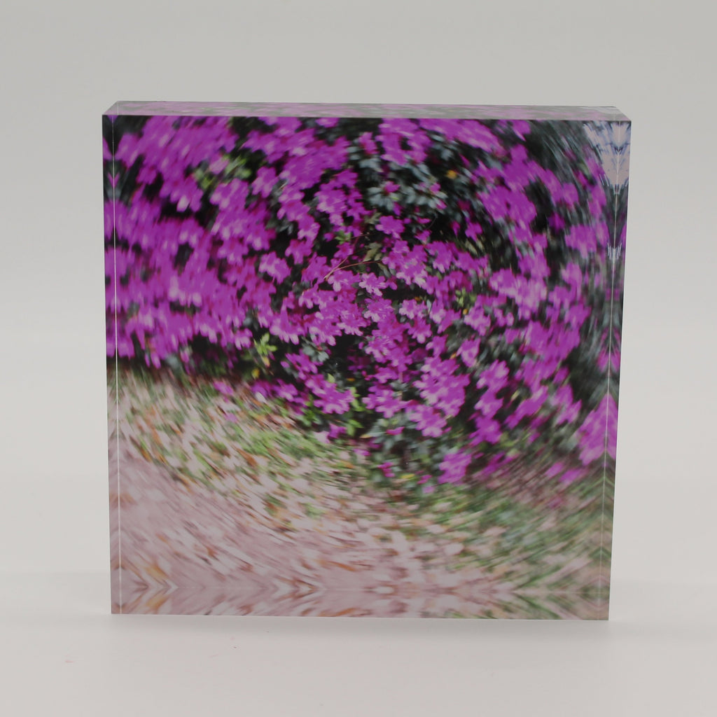 Acrylic block of purple azalea flowers