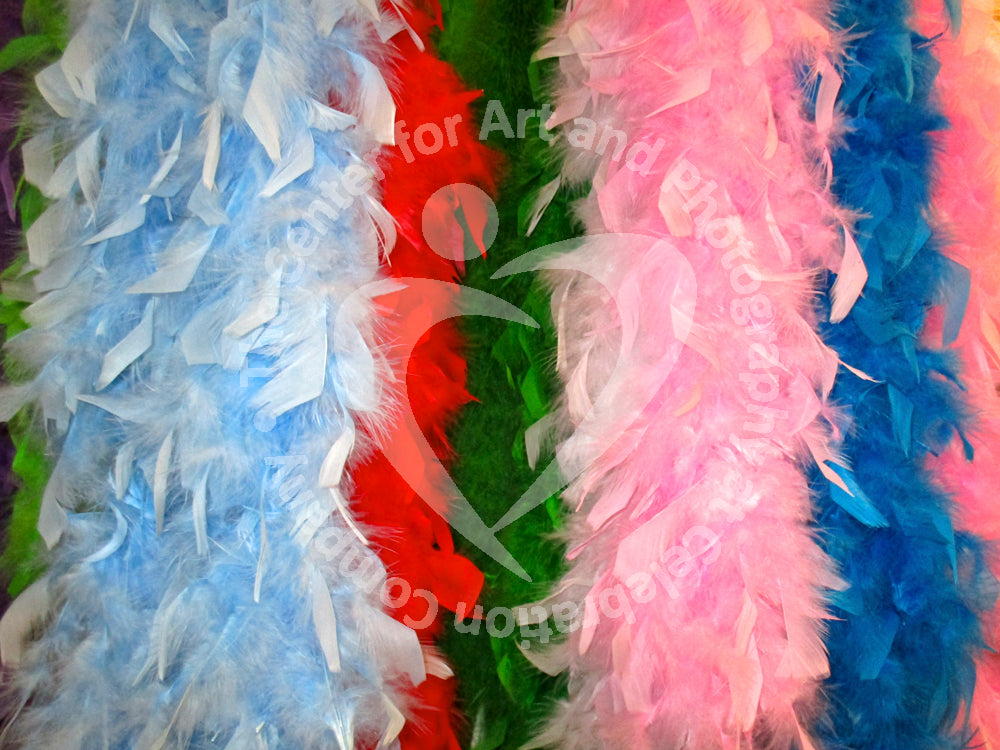 Photograph of colorful feathers creating vertical stripes of various widths. Starting from the left- Light blue, red, green, pink, blue, and pink