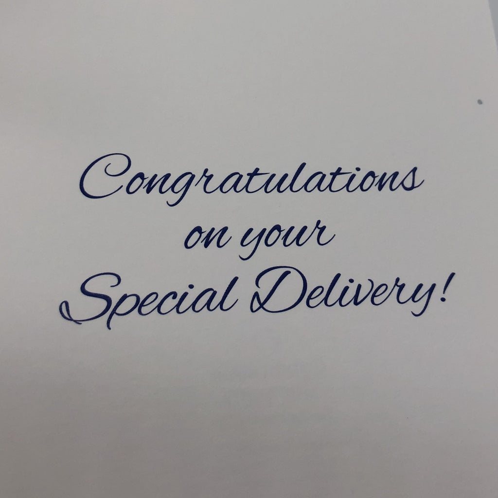 "Inside message in script font printed in blue. ""Congratulations on your Special Delivery!"""