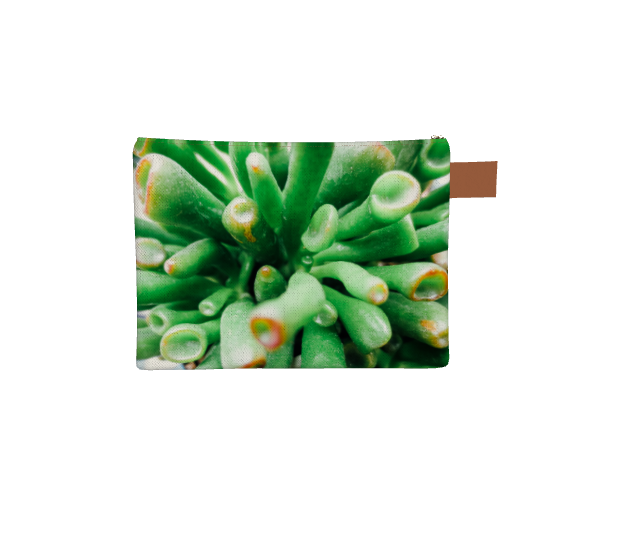 Zipper carry all bag with brass zipper and a brown leather pull string,  depicting close up view of green succulent plant