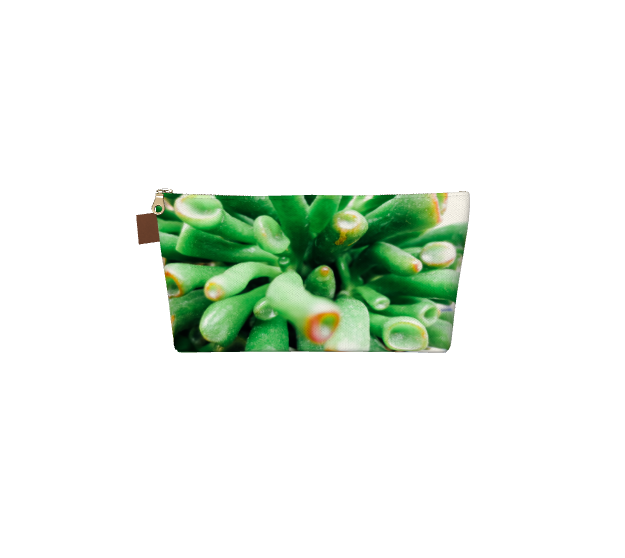 Makeup bag with an image of a close up view of green succulent plant