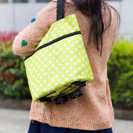 Ultra-Thin Compact Multi Card Holder