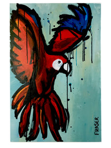 Birds of a Feather: The Macaw