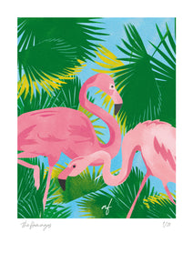 Feathered Friends: The Flamingos