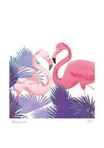Feathered Friends: The Flamingos (There You Are)