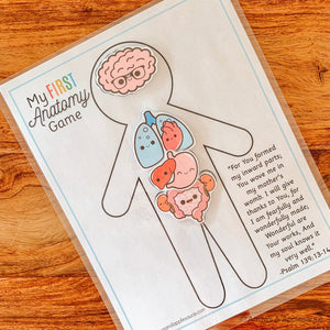 "Preschool ""My First"" Anatomy Printable - Arrows And Applesauce"
