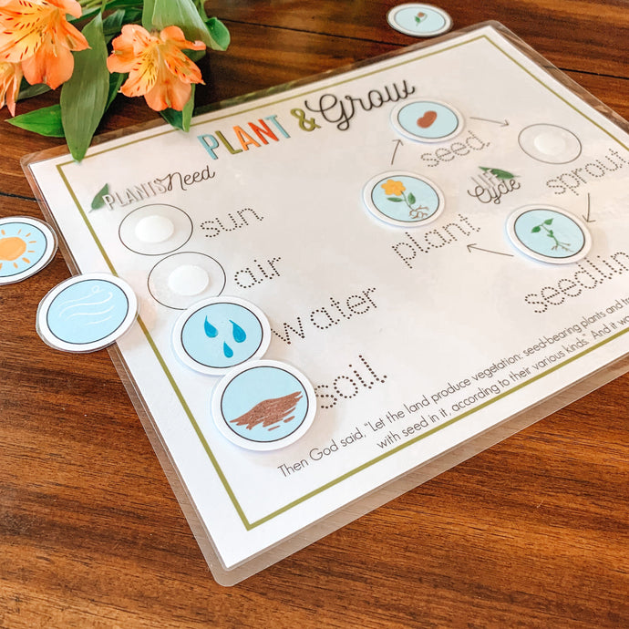 Plant Life Cycle Printable Activity - Arrows And Applesauce