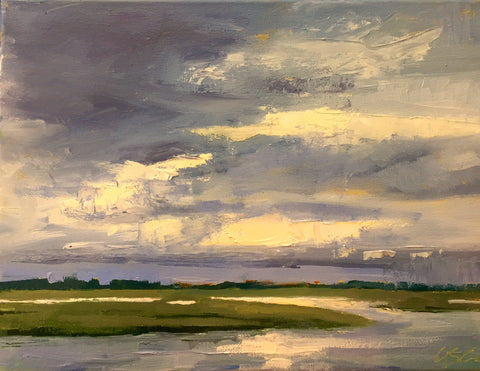 Afternoon Storm - Susie Callahan