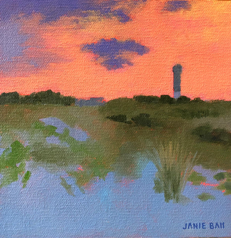 Carolina Skies- Janie Ball