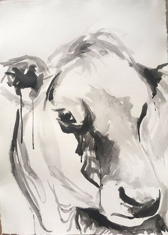 Cow Portrait In Ink II - Christen Yates